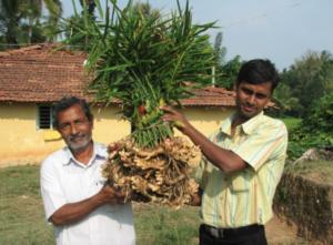 Ingredienti biologici e fair trade