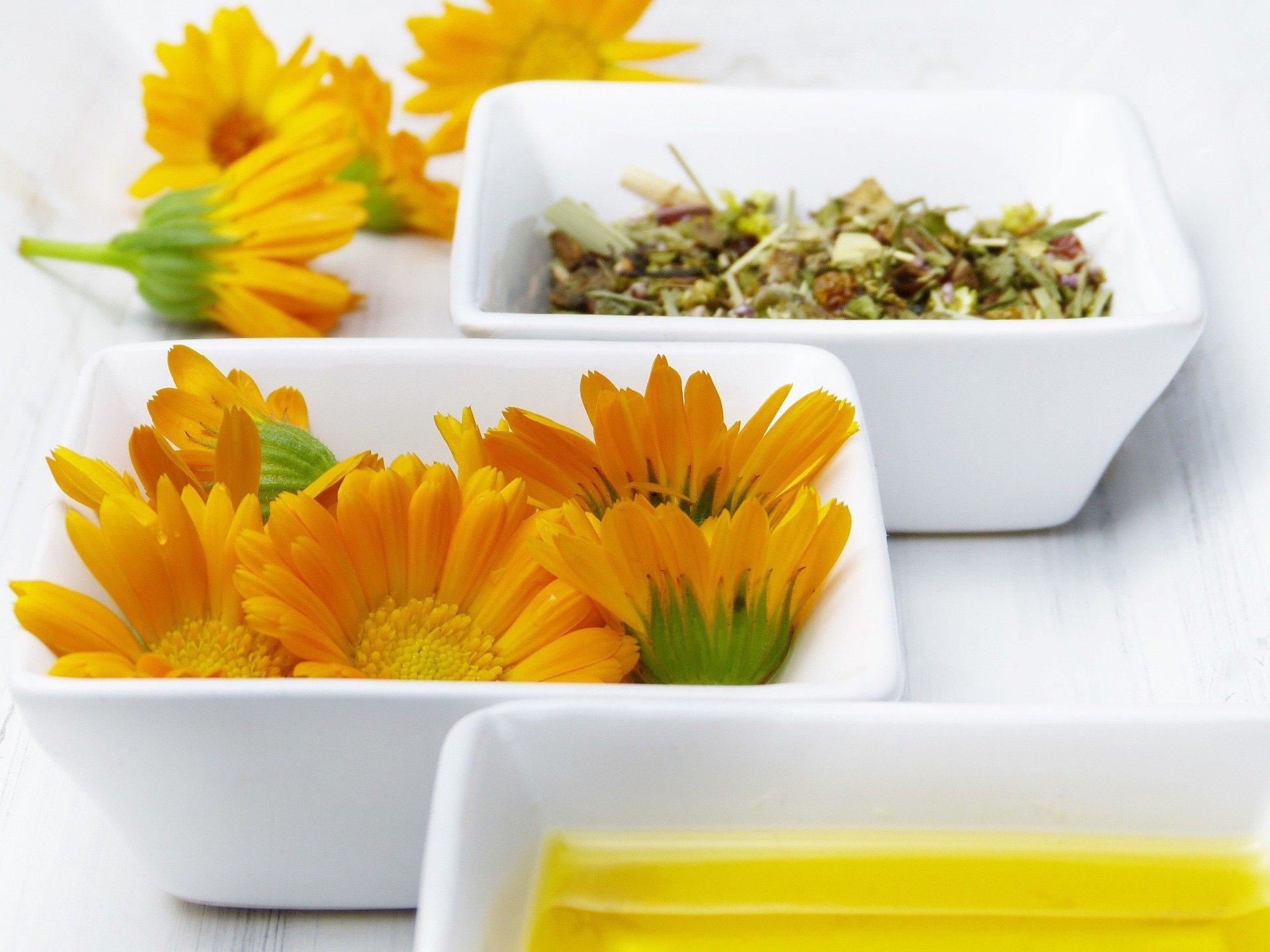 bowls-4369075_1920